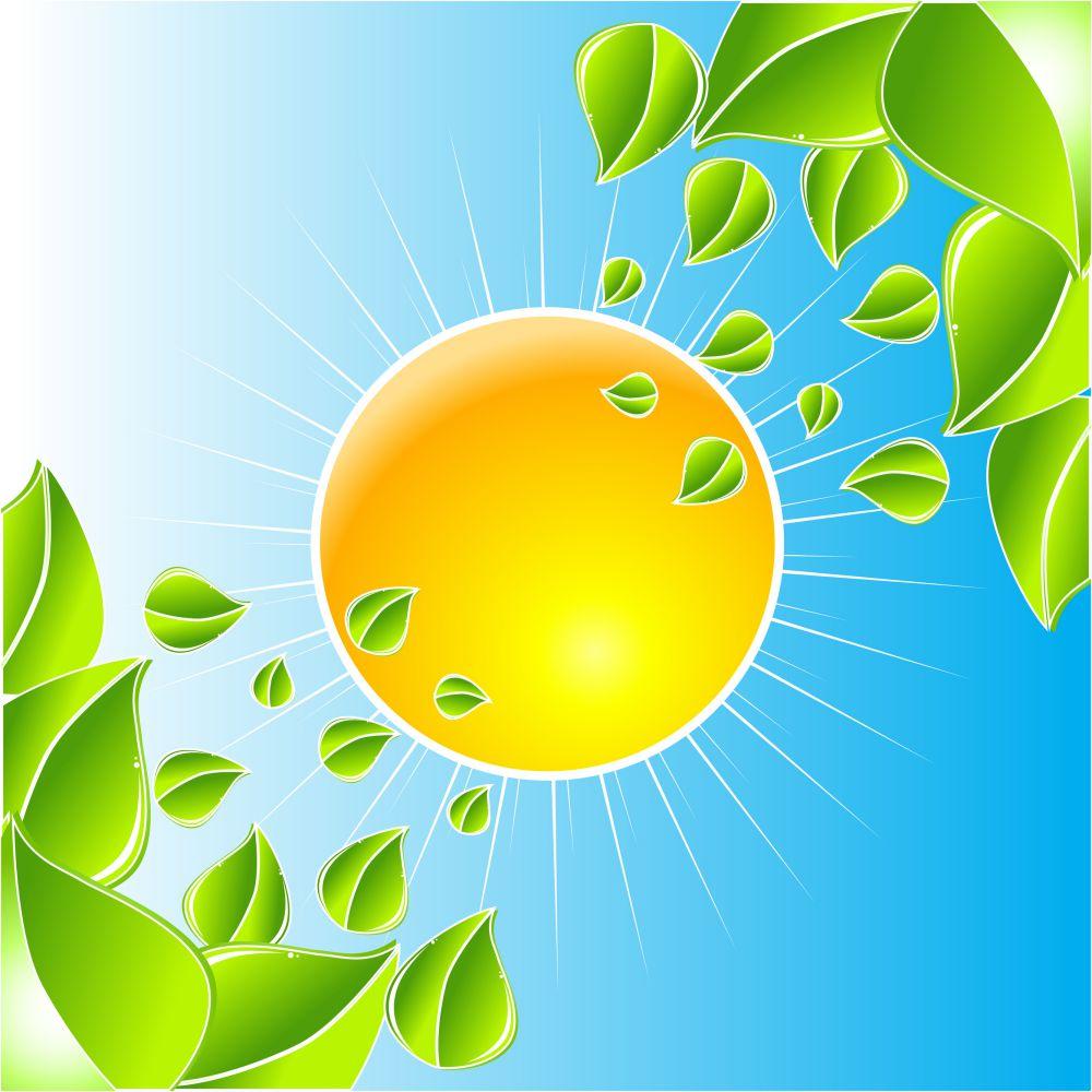 solar consciousness