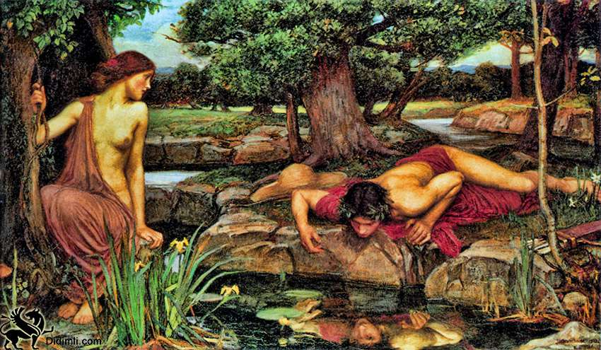 narcissus and the mirror